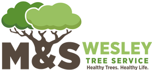 M & S Wesley Tree Service